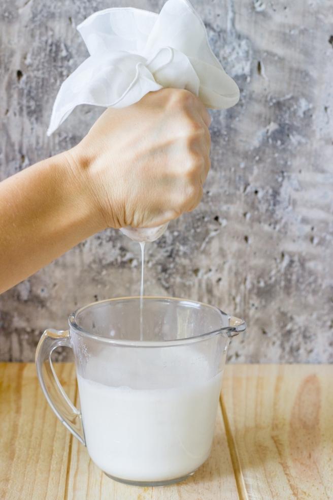 guia de leites vegetais 2